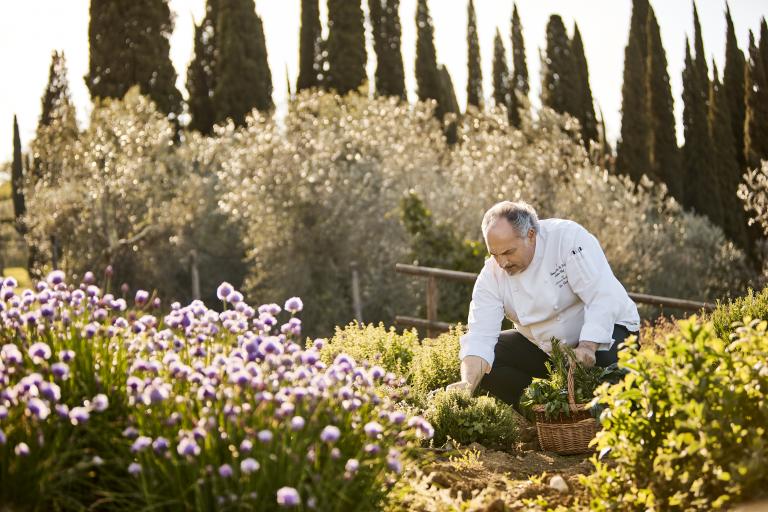 Chef in the Herb Garden