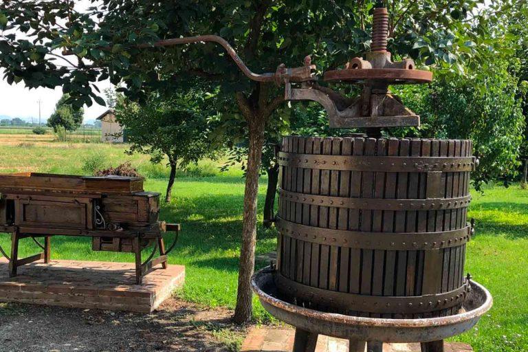 San Donnino balsamic vinegar making