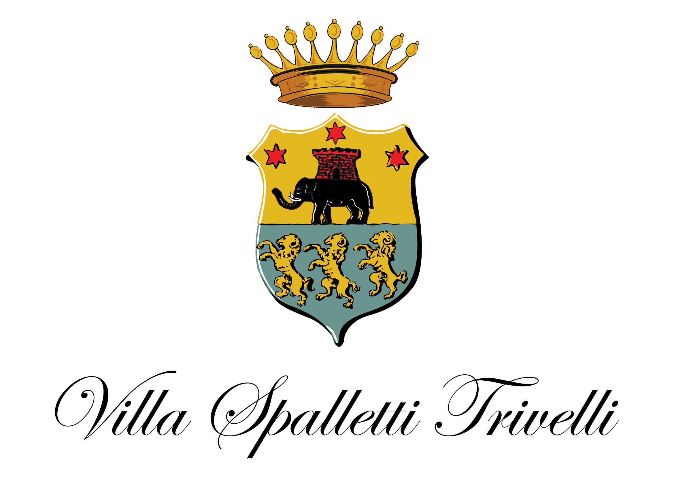 VST_Logo_Vettoriale-1