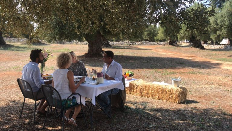 Dining in the olive grove
