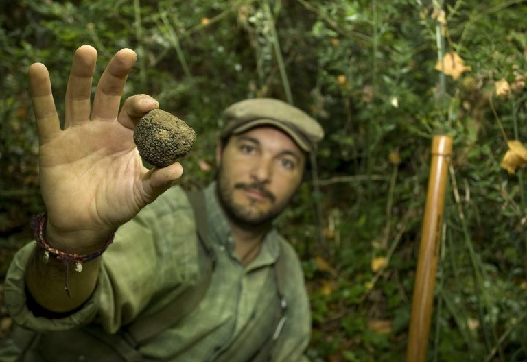 Italy with Class Truffle Hunting in Tuscany Savini Tartuffi
