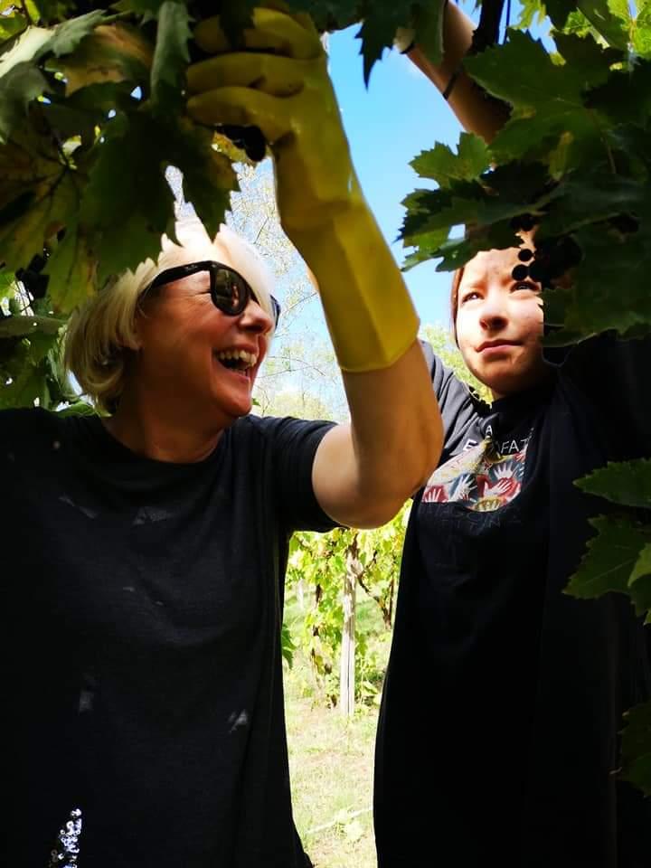 Italy with Class Vineyard Marilena