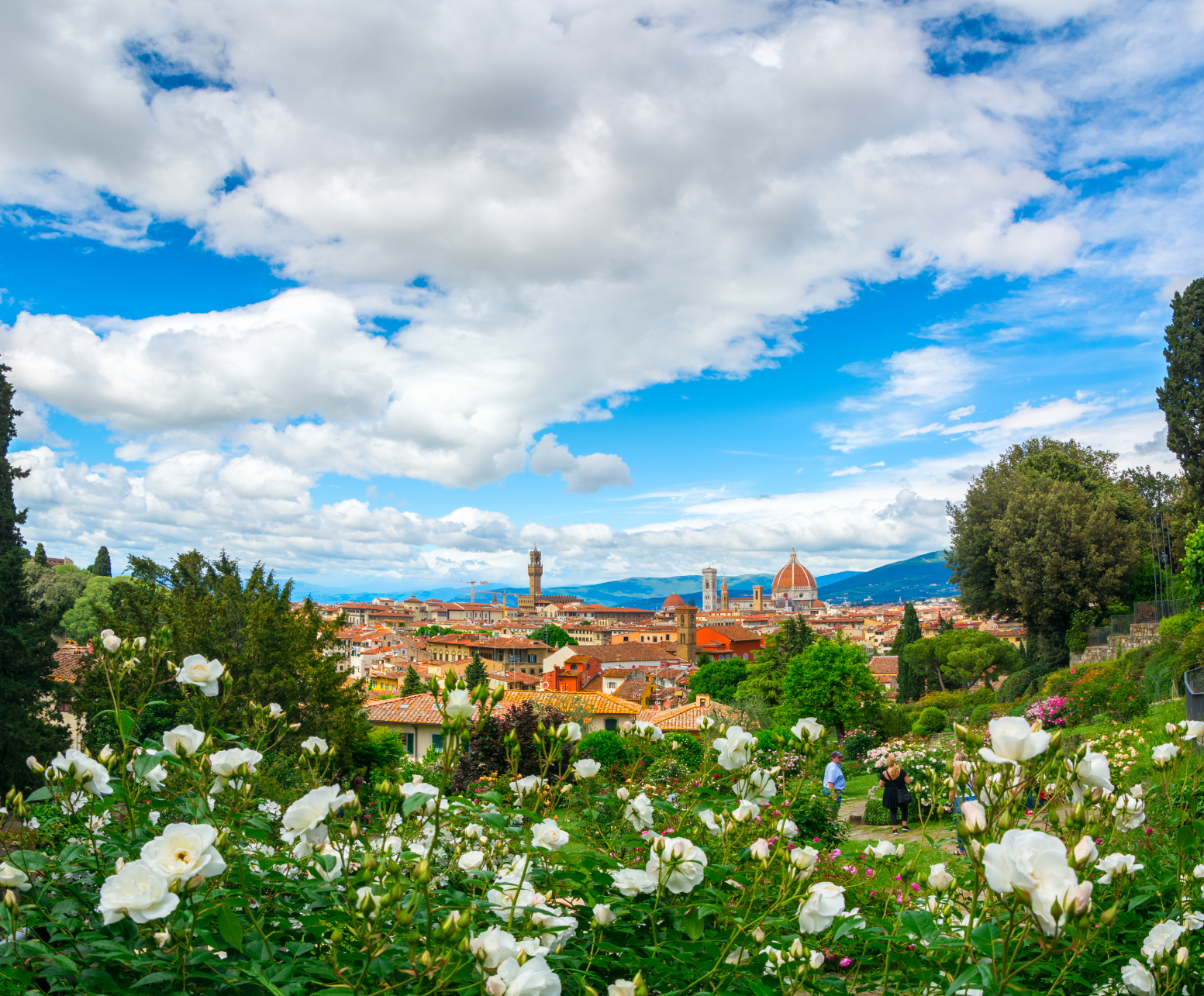 Rose Garden Florence min