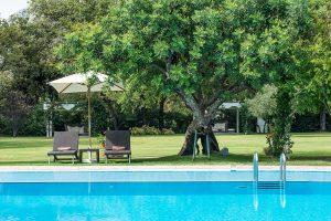 Swimming pool 30